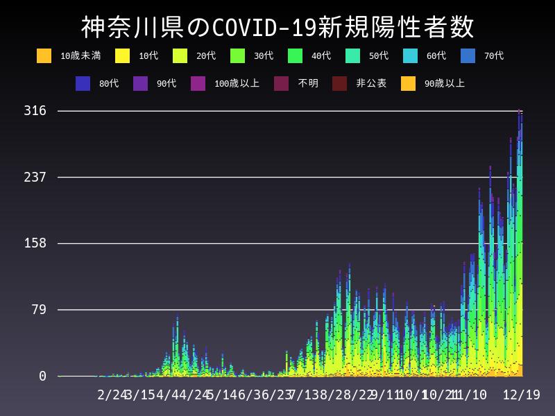 2020年12月19日 神奈川県 新型コロナウイルス新規陽性者数 グラフ