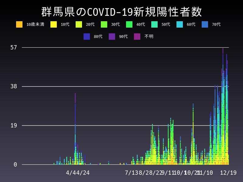 2020年12月19日 群馬県 新型コロナウイルス新規陽性者数 グラフ
