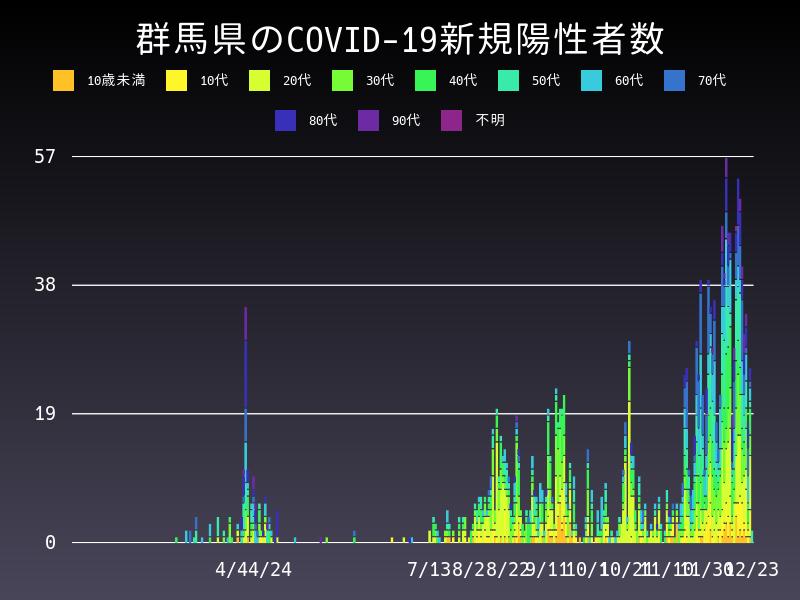 2020年12月23日 群馬県 新型コロナウイルス新規陽性者数 グラフ