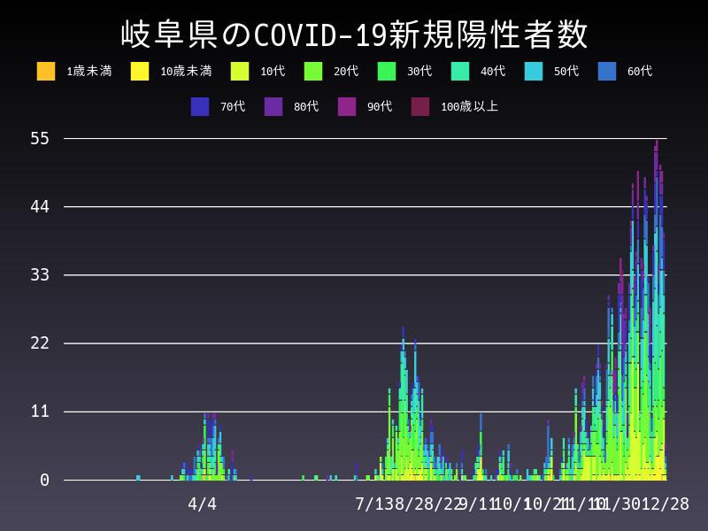 2020年12月28日 岐阜県 新型コロナウイルス新規陽性者数 グラフ