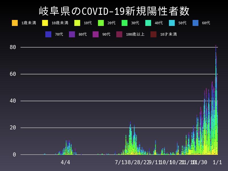 2021年1月1日 岐阜県 新型コロナウイルス新規陽性者数 グラフ