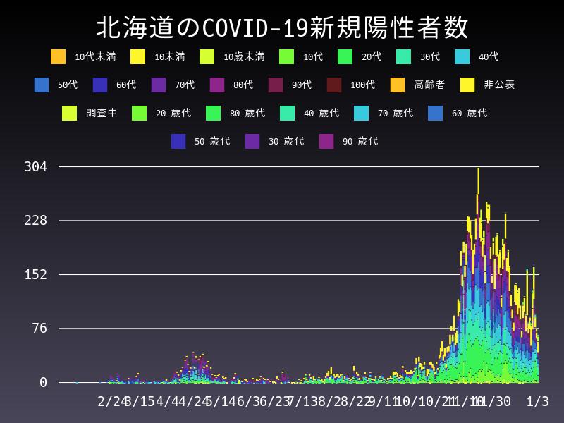 2021年1月3日 北海道 新型コロナウイルス新規陽性者数 グラフ