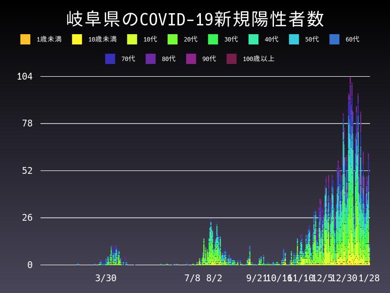 2021年1月28日 岐阜県 新型コロナウイルス新規陽性者数 グラフ