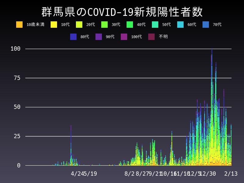 2021年2月13日 群馬県 新型コロナウイルス新規陽性者数 グラフ